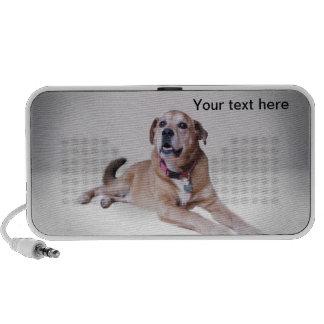 Ponga su perro en un doodle iPod altavoces