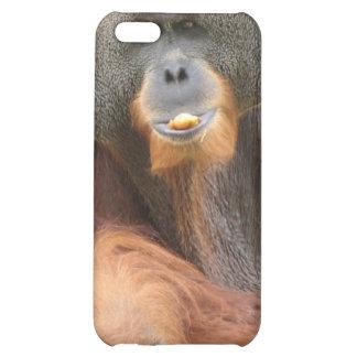 Pongo Ape iPhone Case iPhone 5C Case