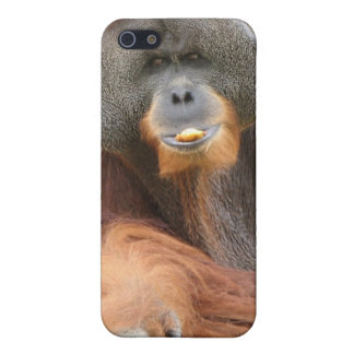 Pongo Ape iPhone Case