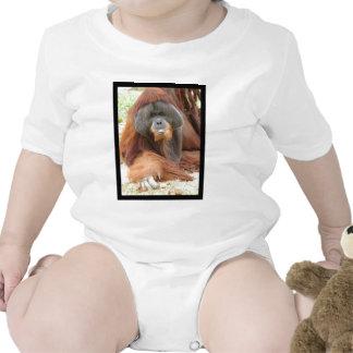 Pongo Orangutan Ape Baby T-Shirt