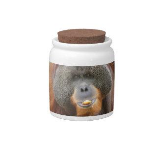Pongo Orangutan Ape Candy Jar