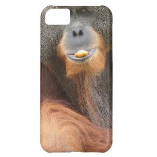 Pongo Orangutan Ape Case For iPhone 5C