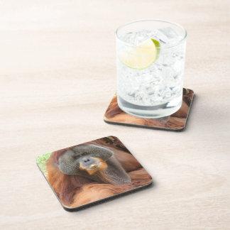 Pongo Orangutan Ape Cork Coasters