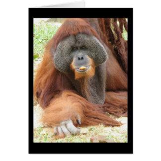 Pongo Orangutan Ape Greeting Card