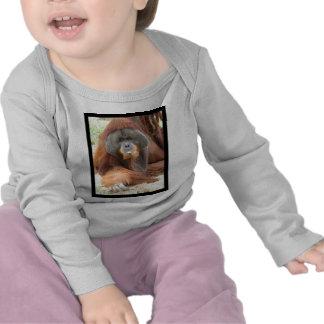 Pongo Orangutan Ape Infant T-Shirt