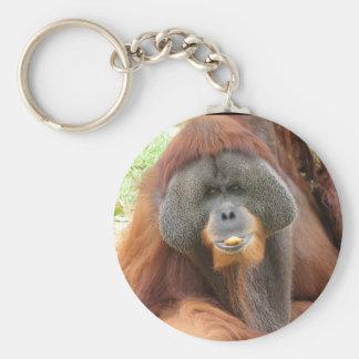 Pongo Orangutan Ape Keychain