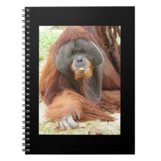 Pongo Orangutan Ape Notebook