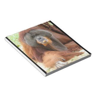 Pongo Orangutan Ape Notepad