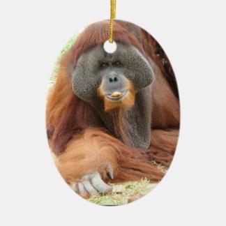 Pongo Orangutan Ape Ornament