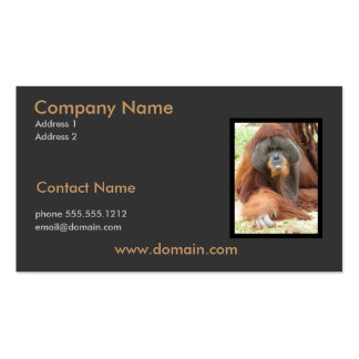 Pongo Orangutan Business Card