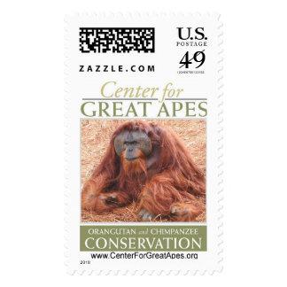 Pongo Stamp