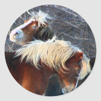 ponies classic round sticker