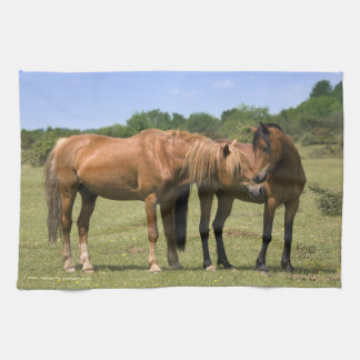 Ponies in Love Kitchen Towel