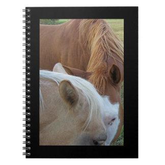 Ponies Notebook