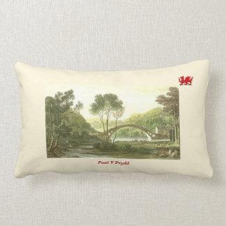 Pont Y Prydd Lumbar Pillow