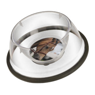 pony-45 pet bowl