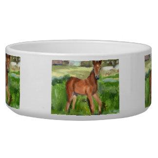 Pony aceo dog food bowls