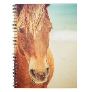 Pony by the Sea Notebook