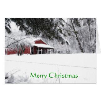 Pony Christmas Card