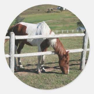 pony classic round sticker