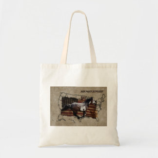 Pony Express Pinto Horse Delivering US Mail Canvas Bags