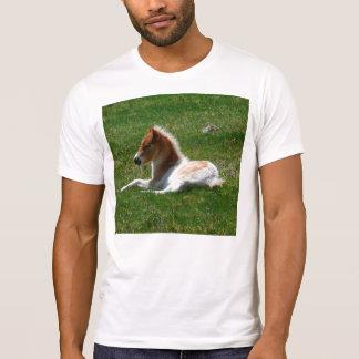 Pony Express Camiseta