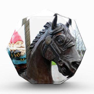 Pony Gnome Acrylic Award
