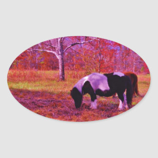 PONY IN A RAINBOW  colored field Oval Sticker