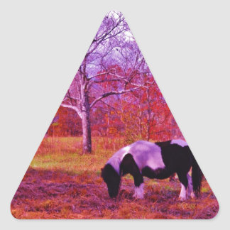 PONY IN A RAINBOW  colored field Triangle Sticker