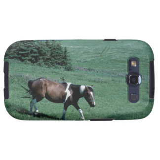 Pony in pasture galaxy SIII cases