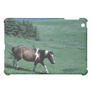 Pony in pasture iPad mini case
