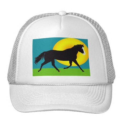 pony in the sun trucker hats