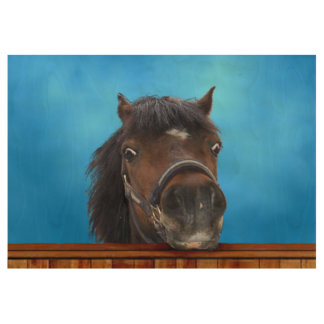 pony looking over fence. Customize me! Wood Poster