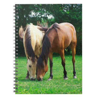 Pony Love Notebook