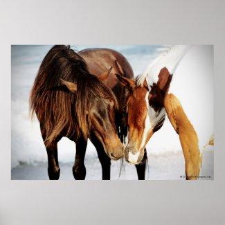 Pony Love Posters