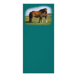 Pony Mare Feeding Foal rack cards