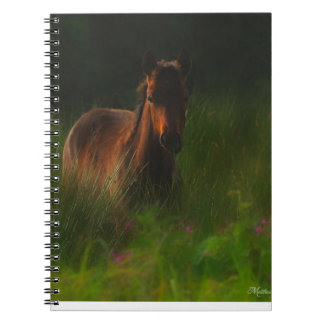 Pony Notebook