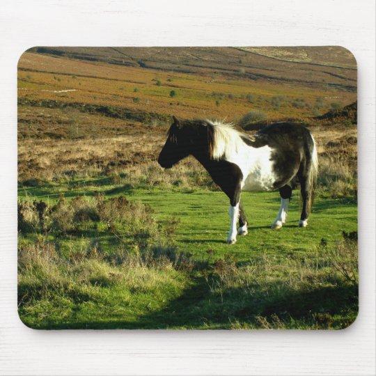 Pony on Dartmoor Mouse Pad