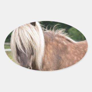 pony oval sticker