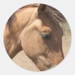 Pony Profile Stickers