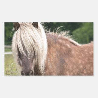 pony rectangular sticker