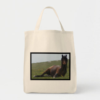 Pony Resting Grocery Tote Bag