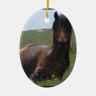 Pony Resting Ornaments