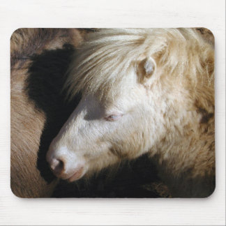 Pony snuggles mouse pad
