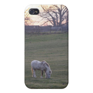 Pony Sunset iPhone 4/4S Cover