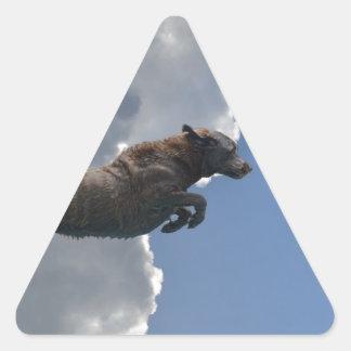 Poo Is Flying!.jpg Triangle Sticker