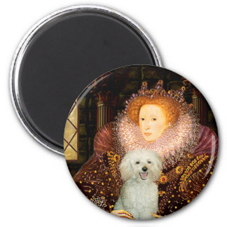 Poodle 13W - Queen Refrigerator Magnets