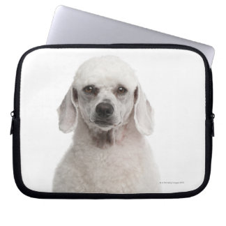 Poodle (1 year old) laptop computer sleeve