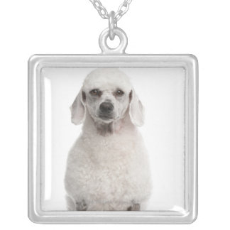 Poodle (1 year old) silver plated necklace