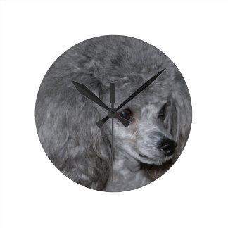 poodle-9.jpg round clock